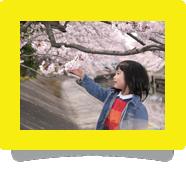 コマーシャル・プロモーションビデオ